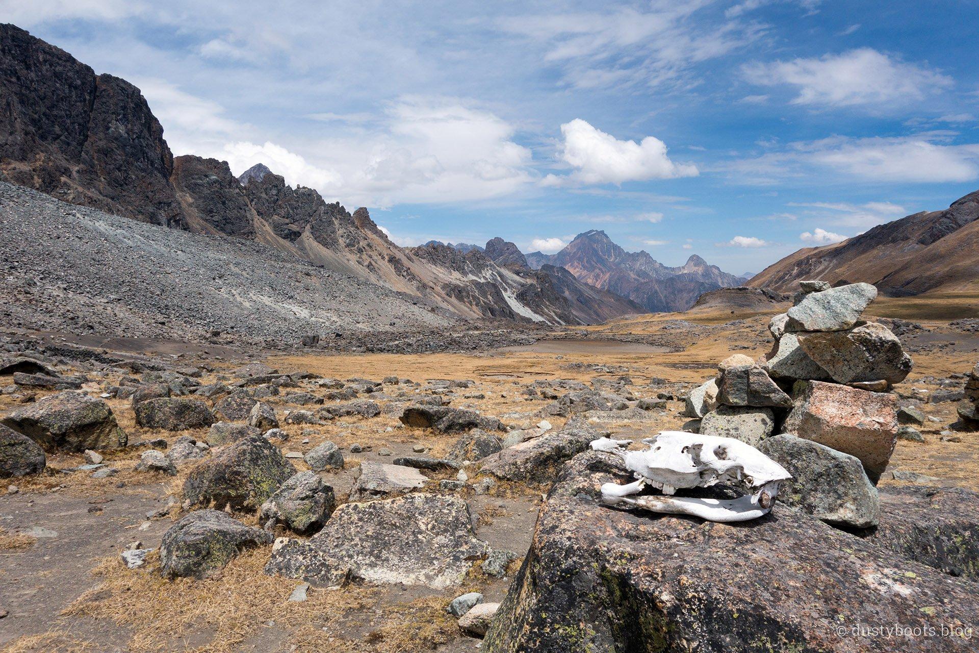 Tag 8: der lange Weg zum Pass (Punta) Tapush (4.750m)