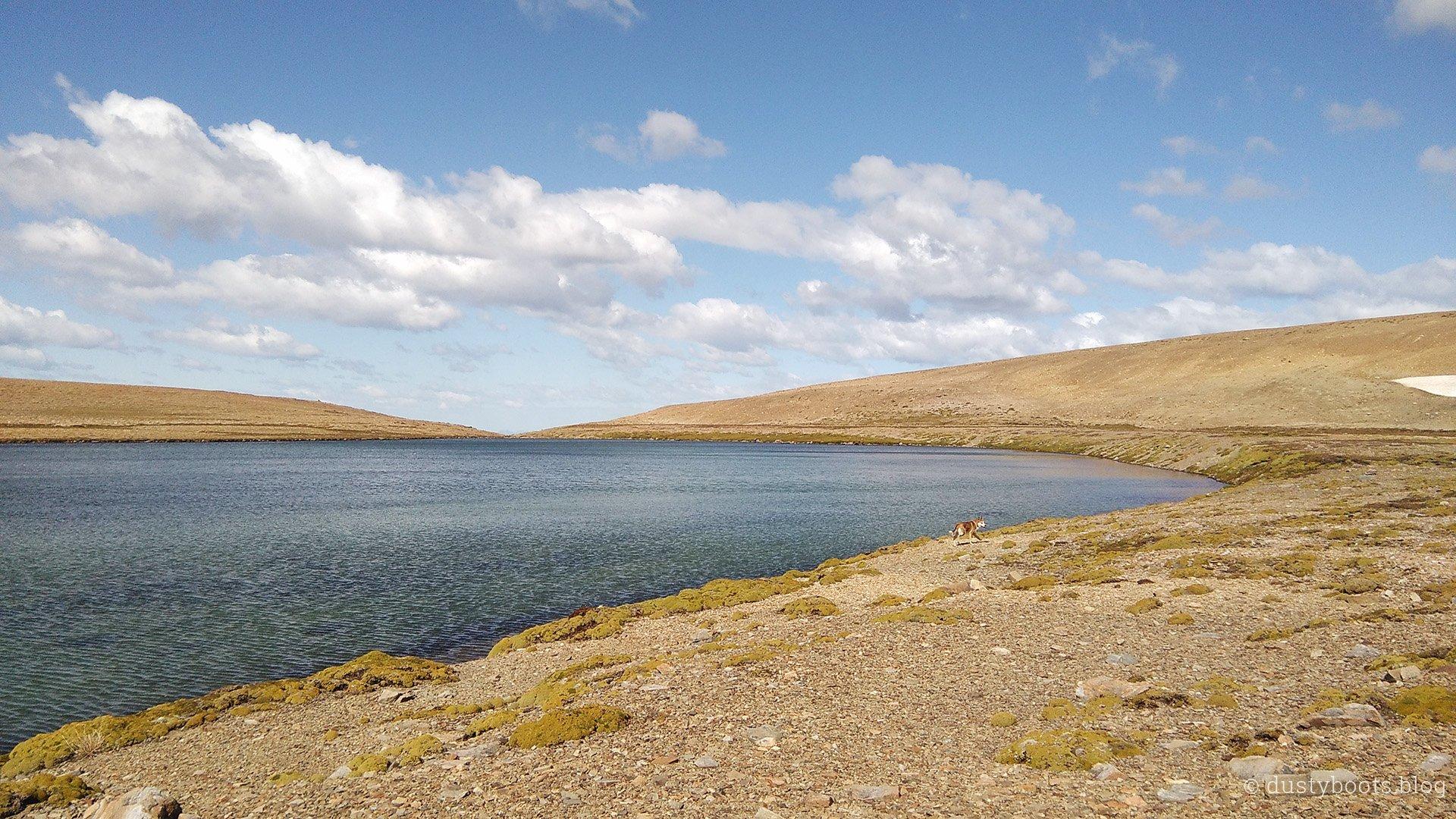 Erinnerungen ans Altiplano werden wach